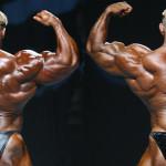 Мышцы спины. Информация для успешных тренировок